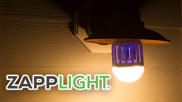 ZappLight Video